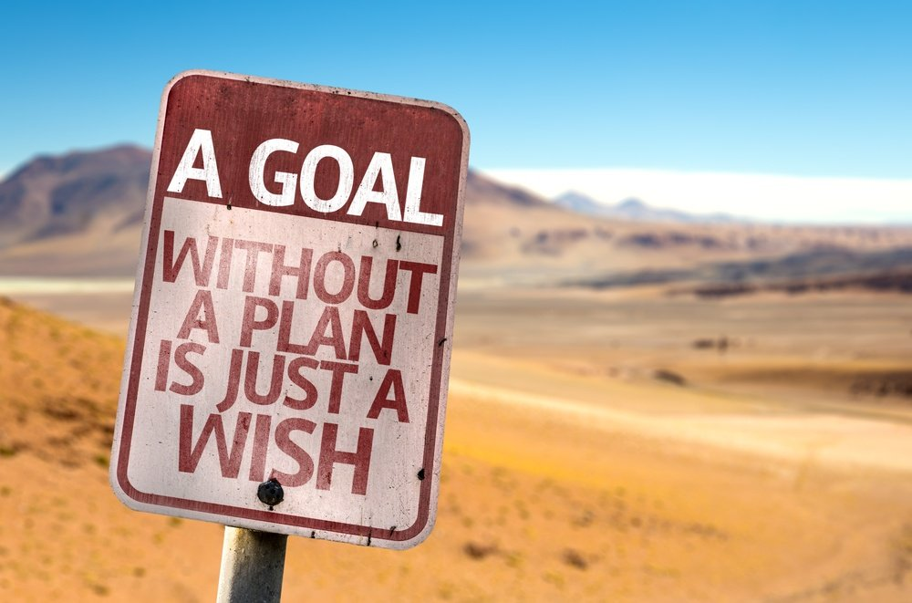A Goal Without a Plan Is Just A Wish - Lone Armadillo