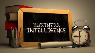Business Intelligence - Lone Armadillo