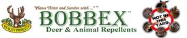 bobbex-header